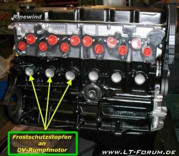 DV-Rumpfmotor